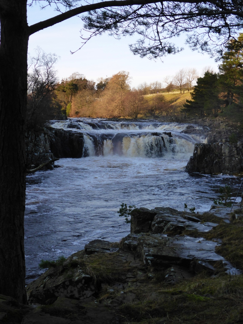 Low Force on the river Tees after heavy rain
