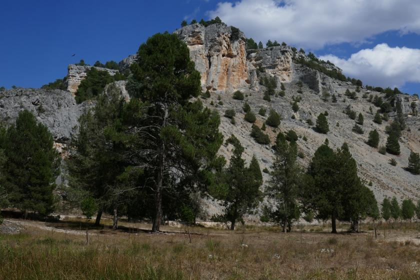 09.01 Canyon de Rio Lobos walk (33).JPG