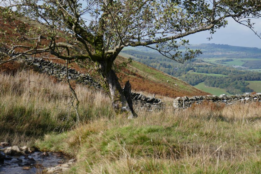 2016 Oct Lake District (1)