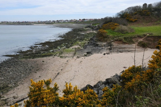 2020 March Heysham walk (12)