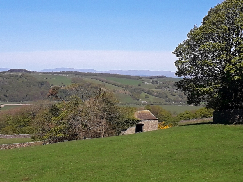 April 2020 River Lune and Caton Moor walk (2)